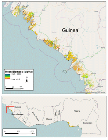 Mangrove biomass maps for west africa center for applied guinea map ccuart Images