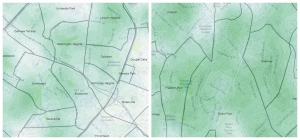 Charlotte's Declining Tree Canopy Hides Years Of Loss In Historically Black Neighborhoods